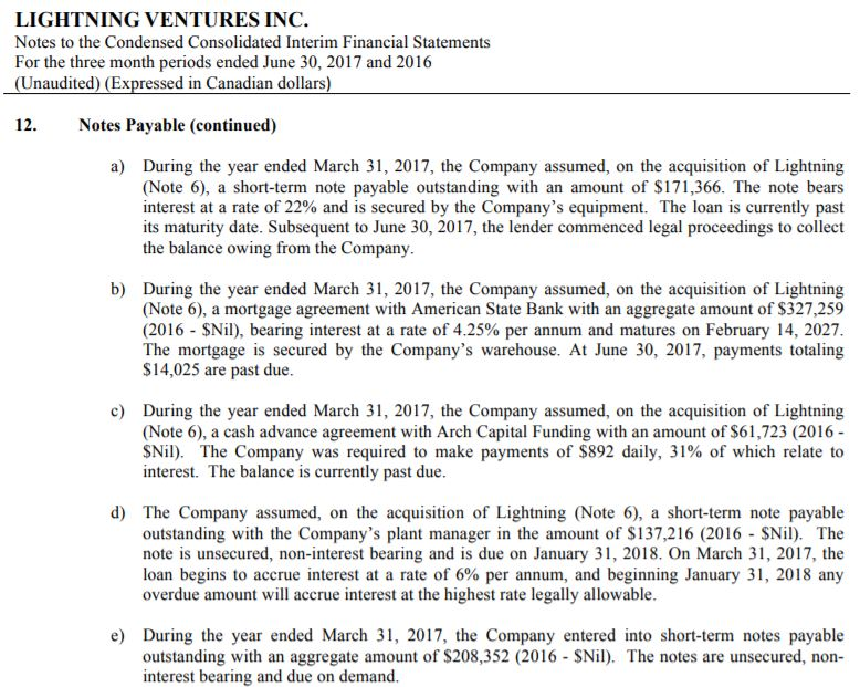 The notes payable portion of Lightning Ventures' interim financial statements as of June 30th, 2017