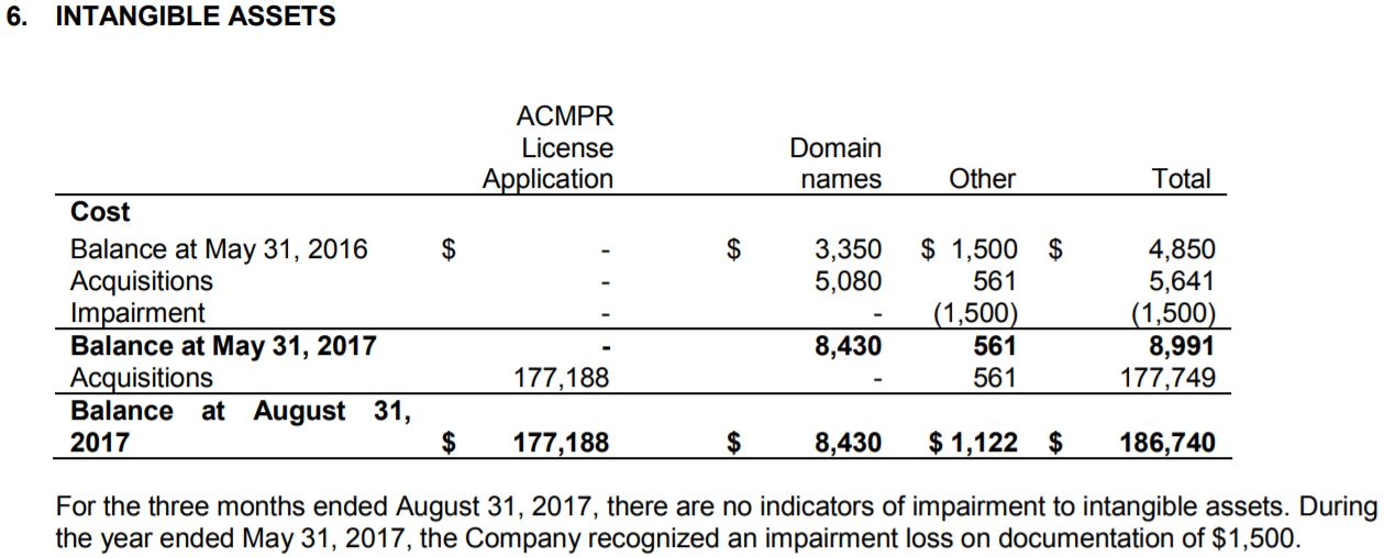 MYM Nutraceuticals Aug 31/17 interim financials, excerpt from page 10.