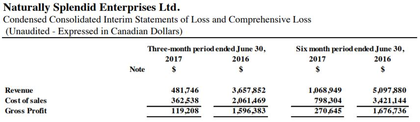 Naturally Splendid's June 30, 2017 quarterly revenues.