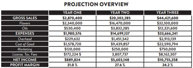 Sales projections for the AMA subsidiary of Friday Night. Snipped from investor presentation.