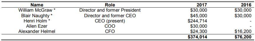 Fandom Sports' executive compensation for the nine months ended October 31, 2017.