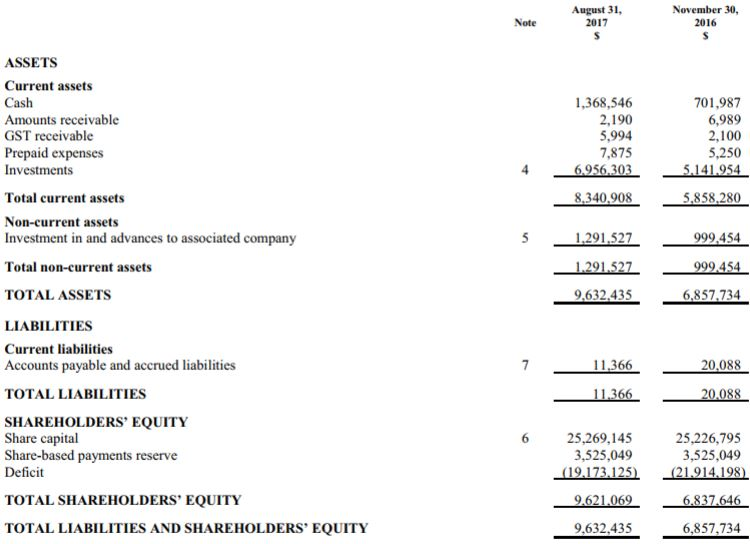 The balance sheet of Rockshield Capital as of August 31, 2017.
