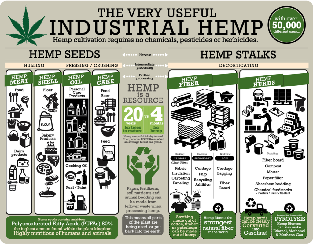 An infographic on the uses for hemp. Sourced via realhemp.com