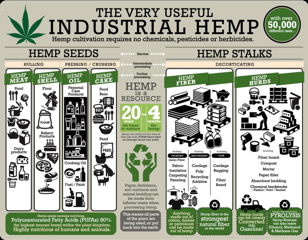An infographic on the uses for hemp. Sourced via realhemp.com