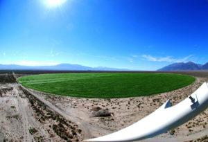 Crop Corp Nevada Hemp Farm