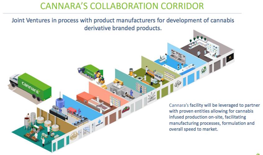 Cannara Biotech Business Plan