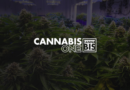 Cannabis One Banner