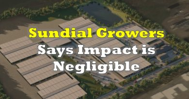 Sundial Growers Issues Response to Report of Zenabis Returning 554 Kilos of Cannabis