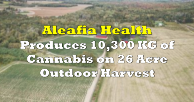 Aleafia Health Produces 10,300 KG of Cannabis on 26 Acre Outdoor Harvest