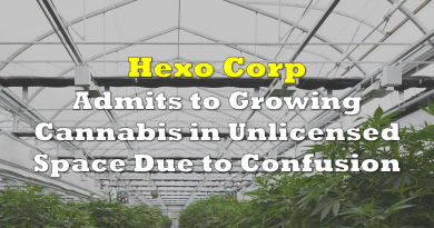 Hexo Corp Admits to Growing Cannabis in Unlicensed Space Due to Confusion