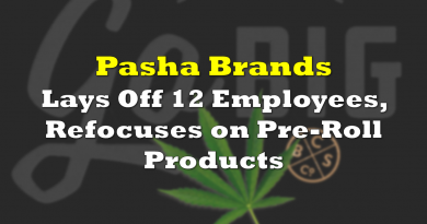 Pasha Brands Lays Off 12 Employees, Refocuses on Pre-Roll Products