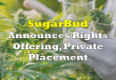 Sugarbud to Conduct Rights Offering, Private Placement