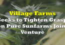 Village Farms Seeks to Tighten Grasp on Pure Sunfarms Joint Venture