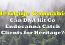 Can DNA Kit Co Endocanna Catch Clients for Heritage Cannabis?