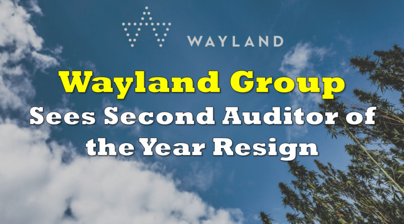 Wayland Group Sees Second Auditor of the Year Resign