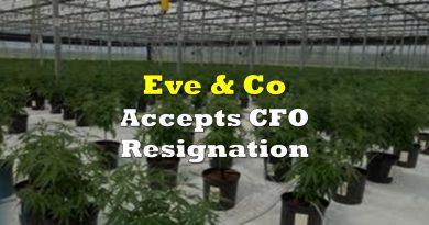 Eve & Co Accepts CFO Resignation