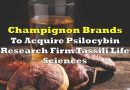 Champignon Brands To Acquire Psilocybin Research Firm Tassili Life Sciences