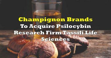 Champignon Brands To Acquire Psilocybin Research Firm Tassili Life Sciences