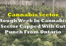 Rough Week In Cannabis Sector Capped With Gut Punch From Ontario