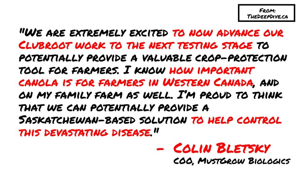 """""""We are extremely excited to now advance our Clubroot work to the next testing stage to potentially provide a valuable crop-protection tool for farmers. I know how important canola is for farmers in Western Canada, and on my family farm as well. I'm proud to think that we can potentially provide a Saskatchewan-based solution to help control this devastating disease.""""  Colin Bletsky, COO MustGrow Biologics"""