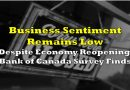 Business Sentiment Remains Low Despite Economy Reopening, Bank of Canada Survey Finds