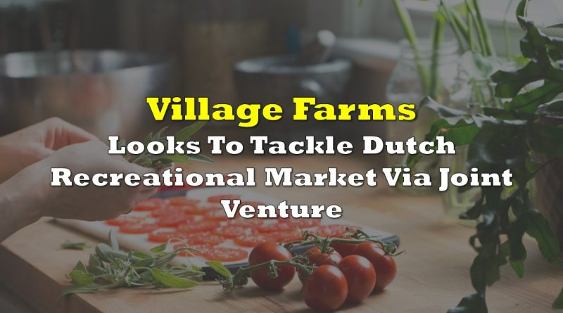 Village Farms Looks To Tackle Dutch Recreational Market Via Joint Venture