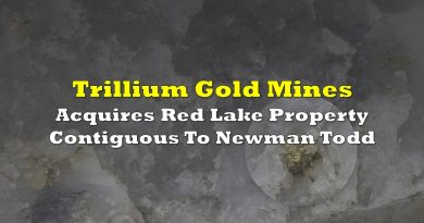 Trillium Gold Acquires Red Lake Property Contiguous To Newman Todd