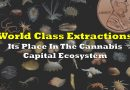 World Class Extraction, And Its Place In The Cannabis Capital Ecosystem