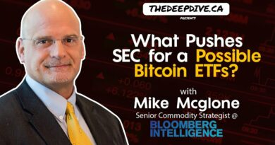 What Pushes The SEC For A Possible Bitcoin ETF? – The Daily Dive